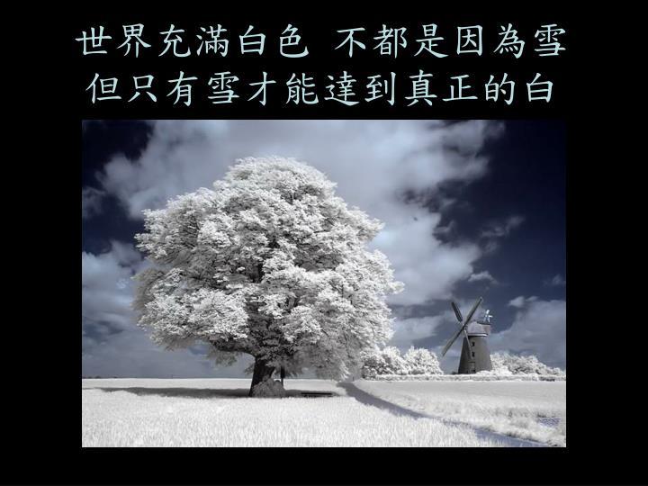 世界充滿白色 不都是因為雪但只有雪才能達到真正的白