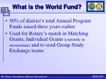 what is the world fund