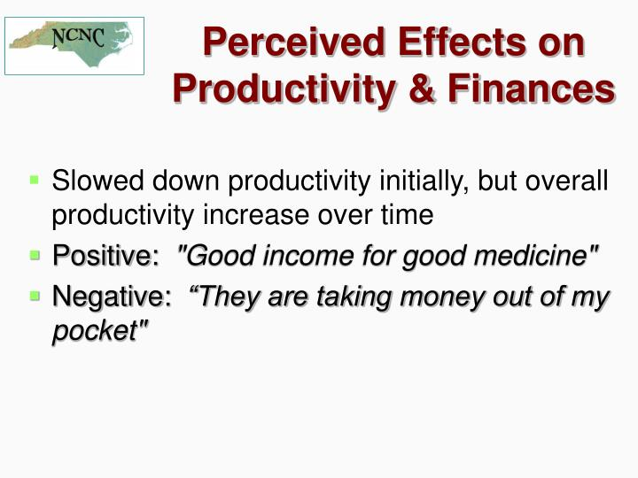 Perceived Effects on Productivity & Finances