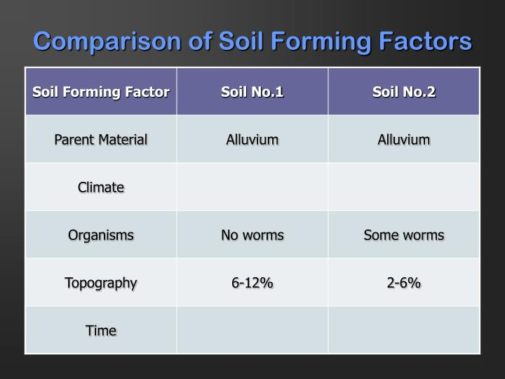 Comparison of Soil Forming Factors
