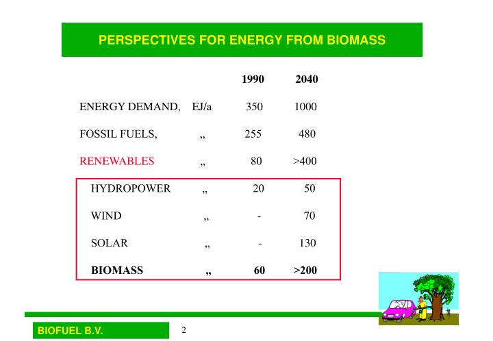 Perspectives for energy from biomass