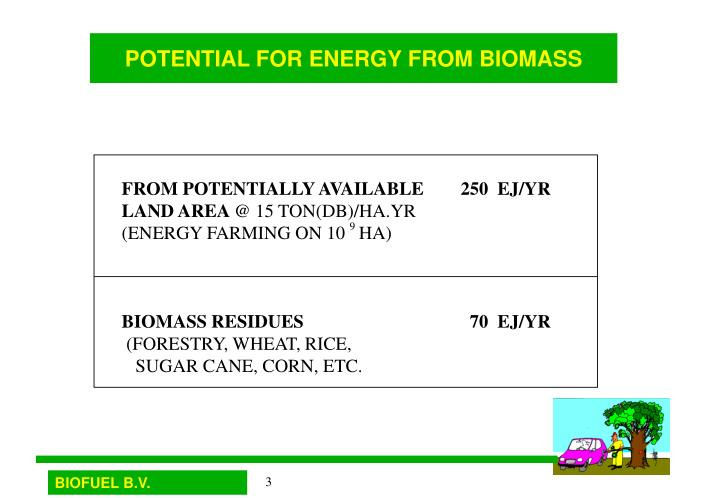 Potential for energy from biomass