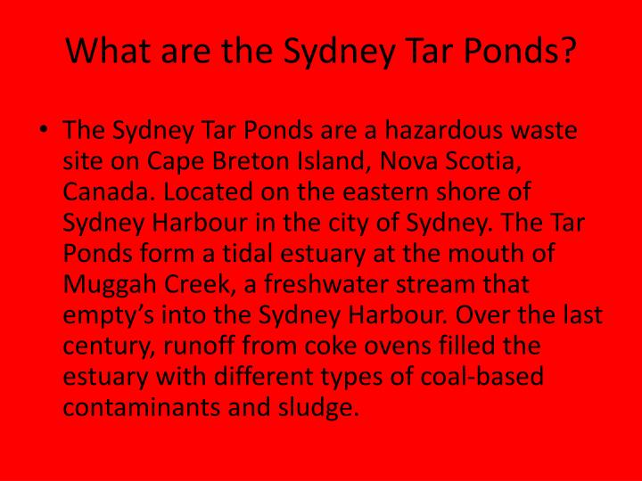 What are the Sydney Tar Ponds?