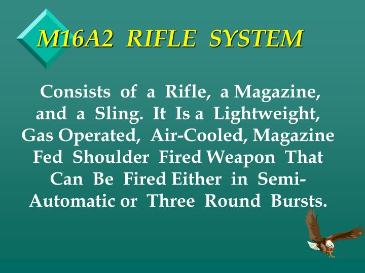M16a2 rifle system