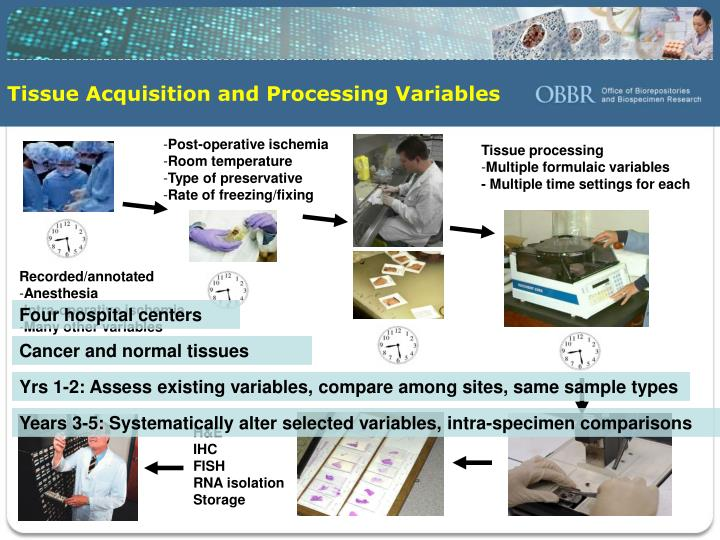 Tissue Acquisition and Processing Variables