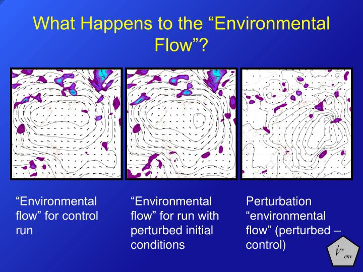 """What Happens to the """"Environmental Flow""""?"""