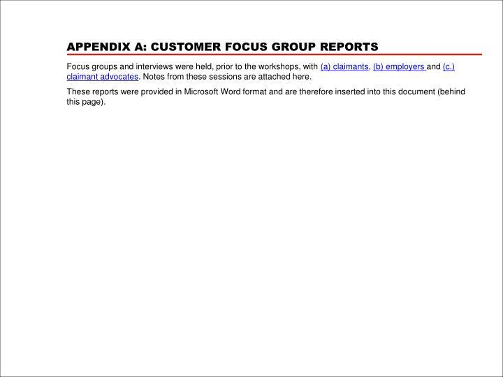 APPENDIX A: CUSTOMER FOCUS GROUP REPORTS