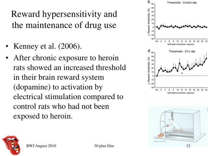Reward hypersensitivity and the maintenance of drug use
