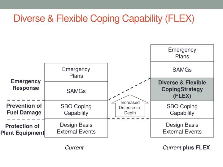 Diverse & Flexible Coping Capability (FLEX)