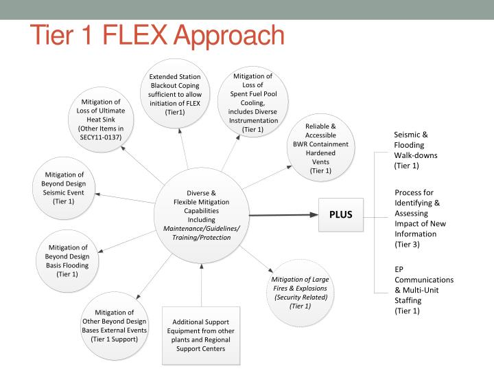 Tier 1 FLEX Approach