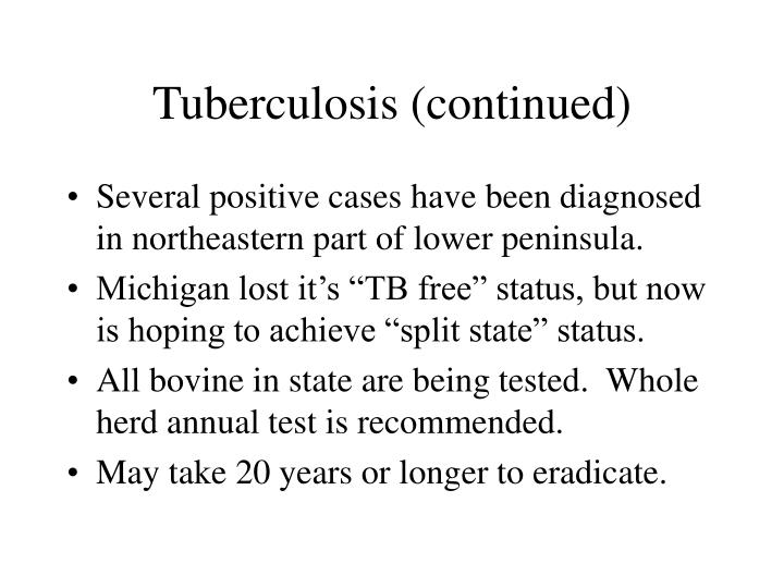 Tuberculosis (continued)