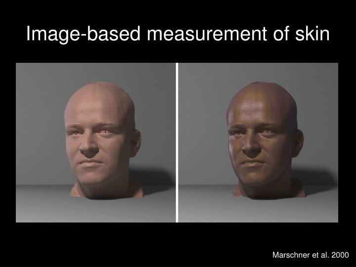 Image-based measurement of skin
