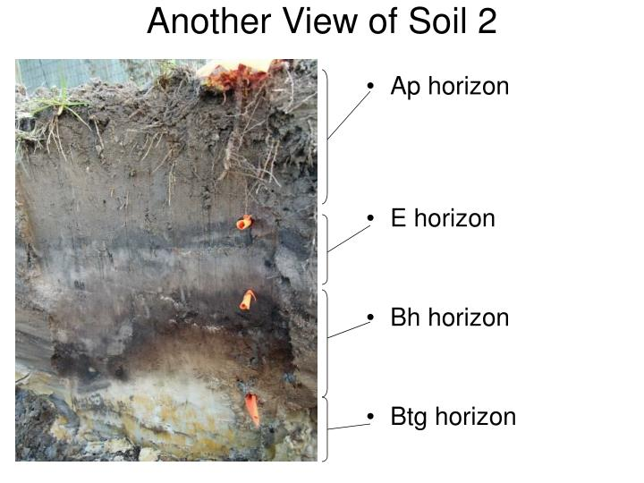 Another View of Soil 2