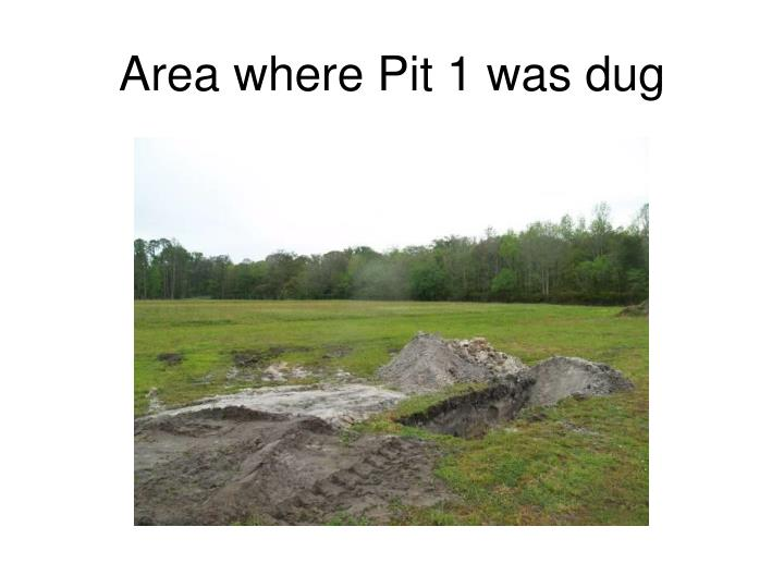 Area where Pit 1 was dug