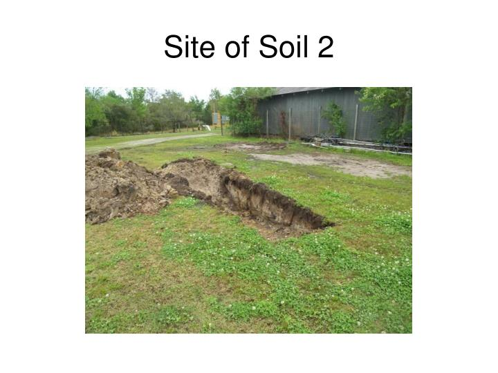 Site of Soil 2