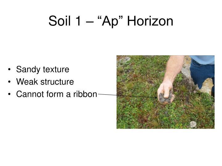 """Soil 1 – """"Ap"""" Horizon"""