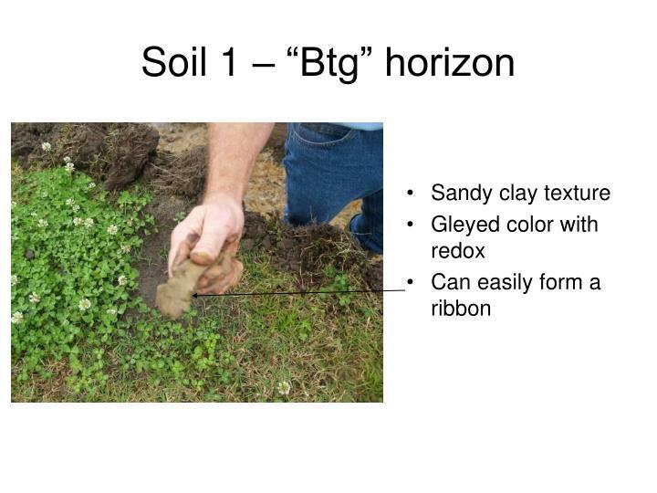 "Soil 1 – ""Btg"" horizon"