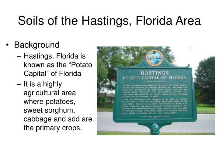 Soils of the Hastings, Florida Area
