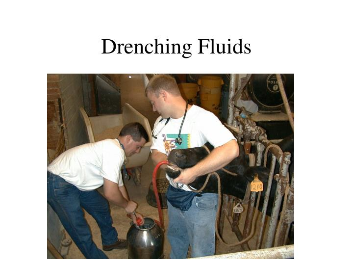 Drenching Fluids