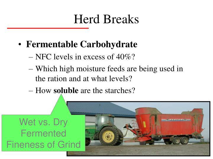 Herd Breaks