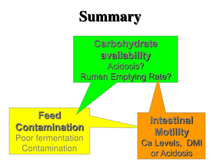 Carbohydrate availability
