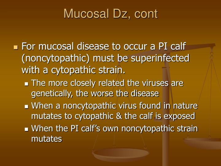 Mucosal Dz, cont