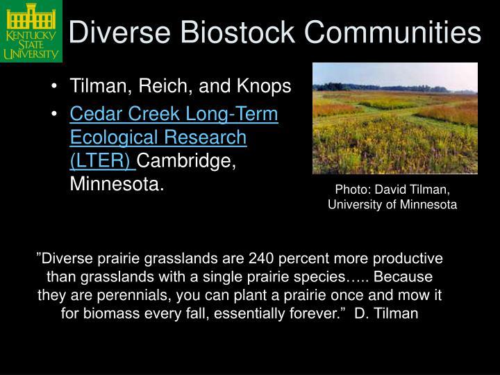 Diverse Biostock Communities