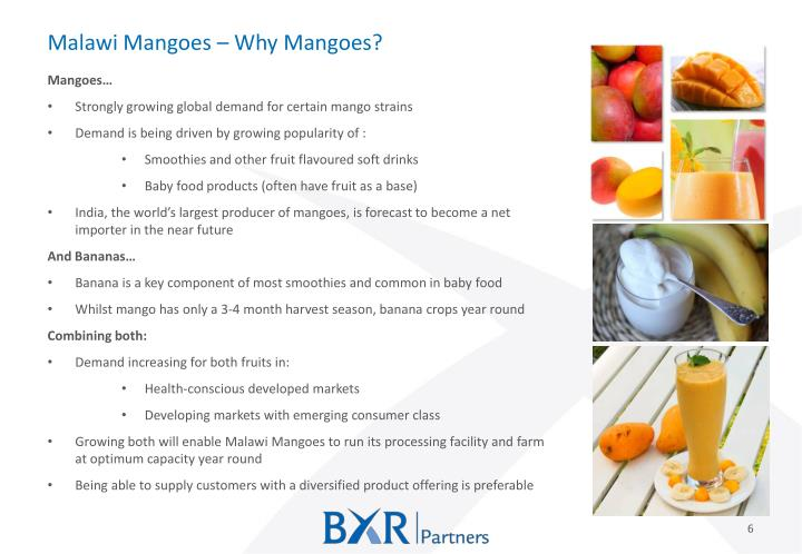 Malawi Mangoes – Why Mangoes?