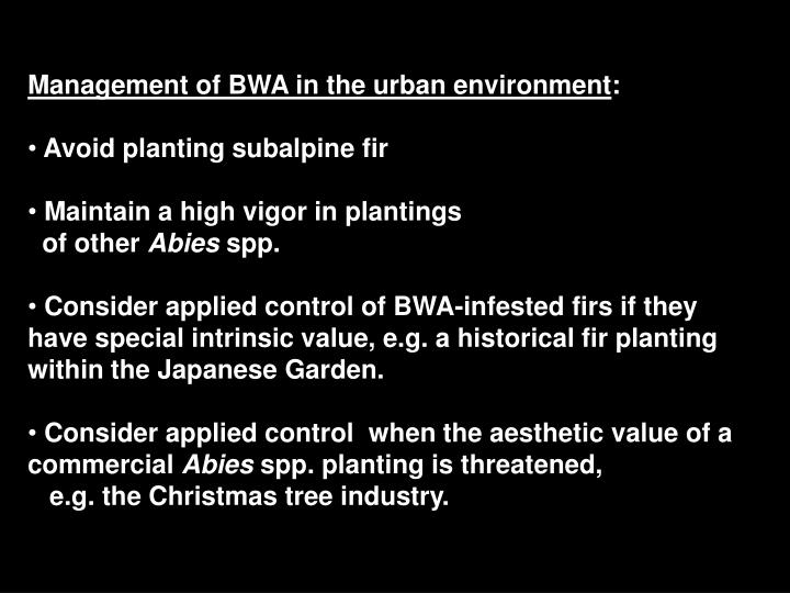 Management of BWA in the urban environment
