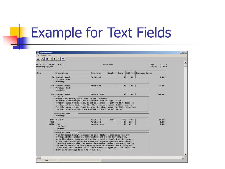 Example for Text Fields