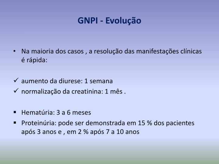 GNPI - Evolução
