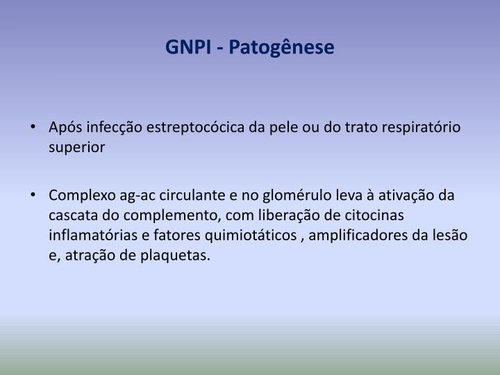 GNPI - Patogênese