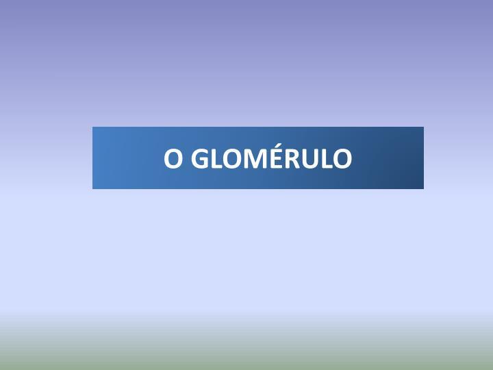 O GLOMÉRULO