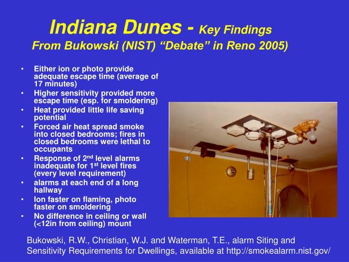 Indiana Dunes -
