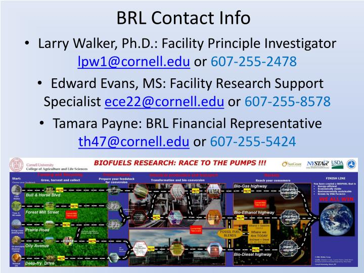 BRL Contact Info