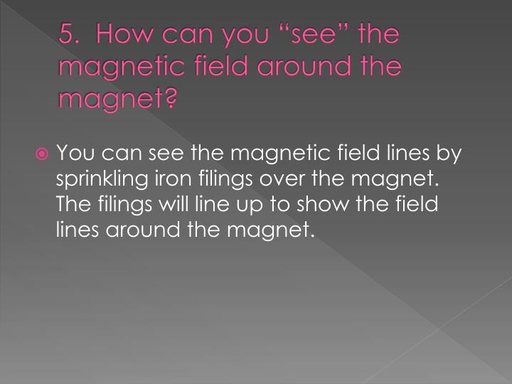 "5.  How can you ""see"" the magnetic field around the magnet?"