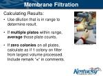 membrane filtration3