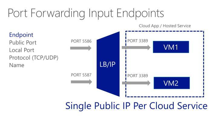Port Forwarding Input Endpoints