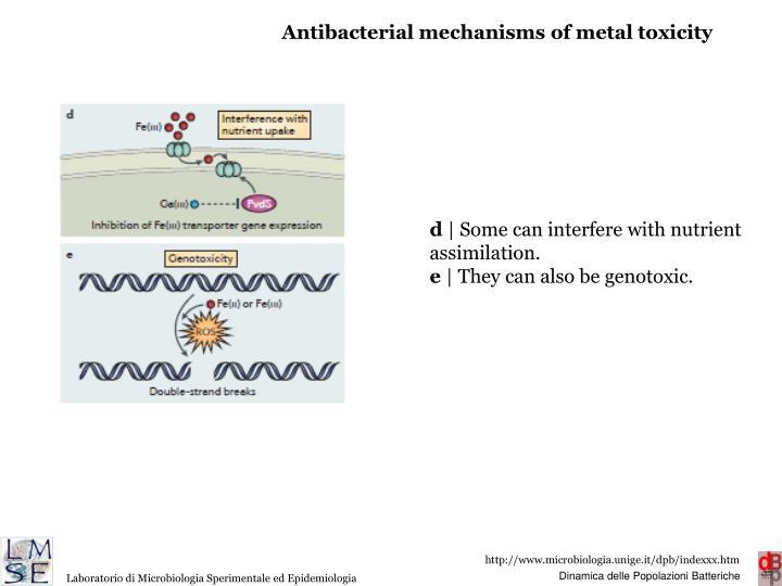 Antibacterial mechanisms of metal toxicity