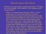 beliefs about their role