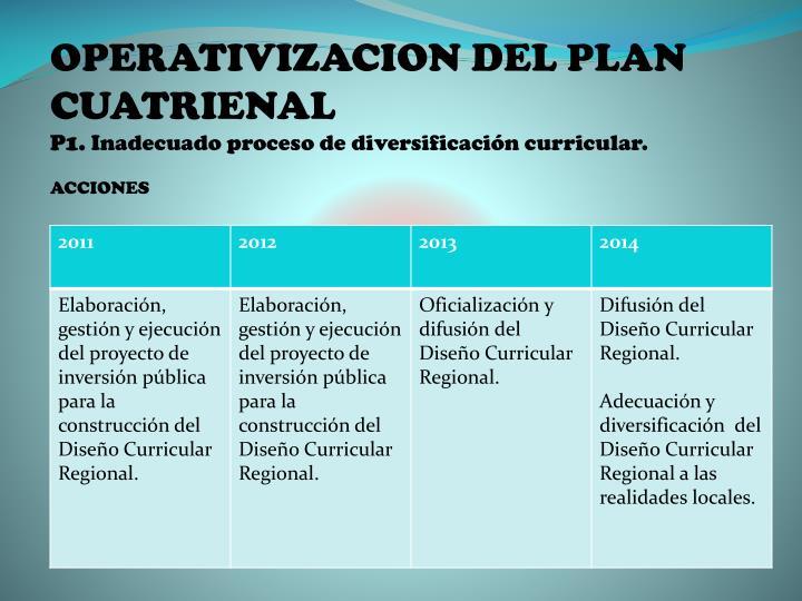 OPERATIVIZACION DEL PLAN CUATRIENAL