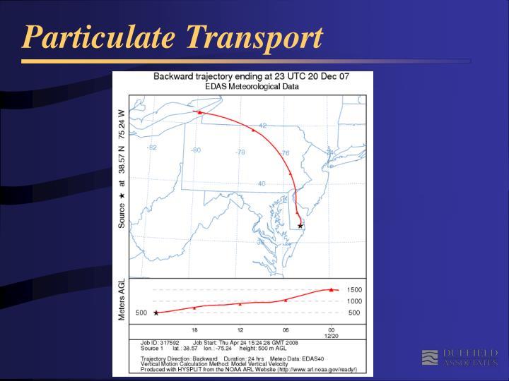 Particulate Transport