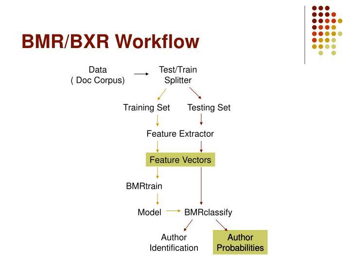 BMR/BXR Workflow