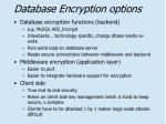 database encryption options