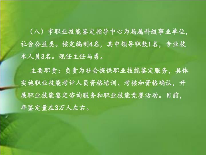 (八)市职业技能鉴定指导中心