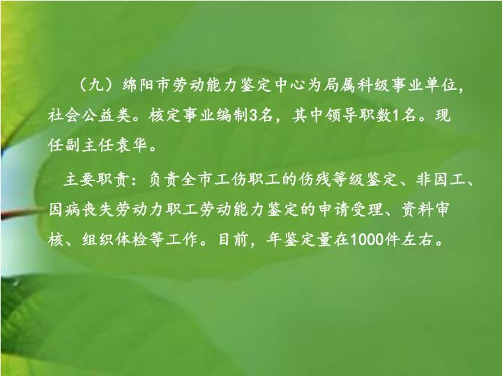 (九)绵阳市劳动能力鉴定中心
