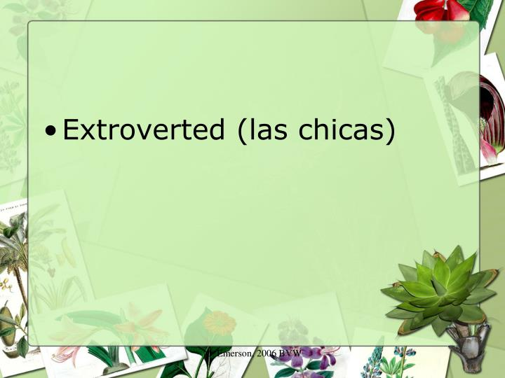 Extroverted (las chicas)