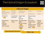 the central oregon ecosystem2