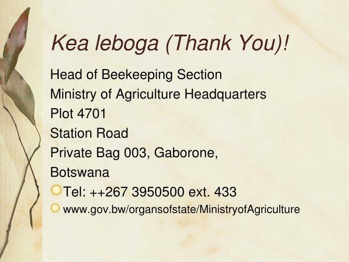 Kea leboga (Thank You)!