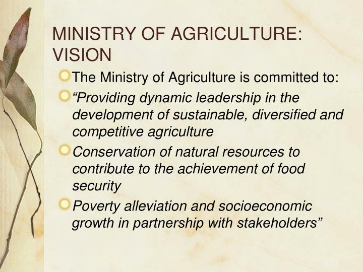 MINISTRY OF AGRICULTURE: VISION